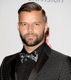 Contratar A Ricky Martin (011)47404843 Onnix Entretenimientos