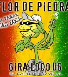 Contratar Flor De Piedra (011-4740-4843) Onnix Entretenimientos