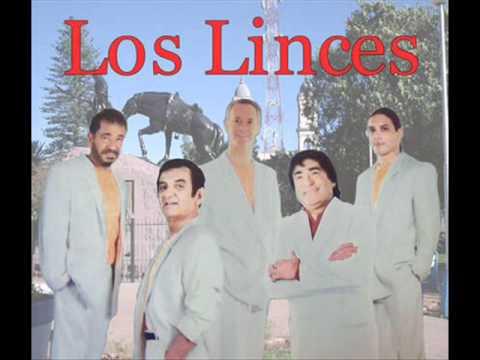 los_linces_christian_manzanelli_los_linces_representante_artistico   (4)