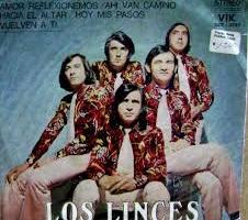 Los_linces_christian_manzanelli_los_linces_representante_artistico   (5)