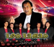 Los_lamas_christian_manzanelli_representante_artistico_contratar_sitio_oficial_los_lamas (1)
