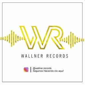 Instagram Wallner Records